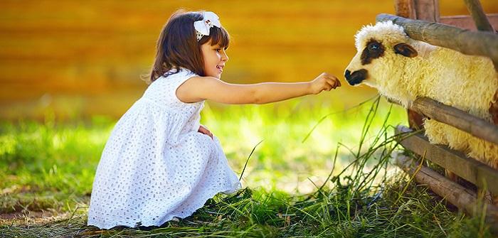 Bauernhof mit Kindern: 5 Bauernhöfe in Deutschland im Test (Foto: Shutterstock-Olesia Bilkei )