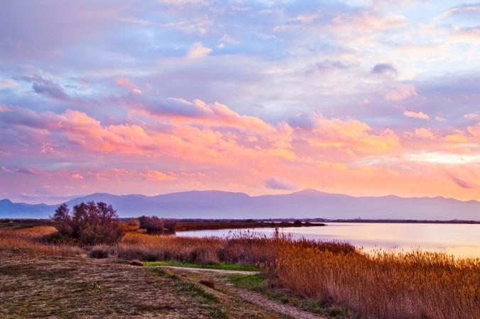 """Am See """"Étang de Canet"""" kann man lange Spaziergänge machen, die Natur genießen und einfach mal die Seele baumeln lassen (#2)"""