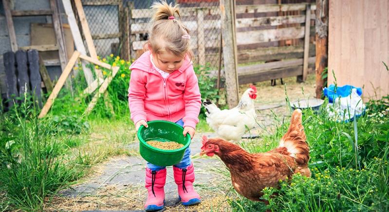 Für Kinder sind solche Bauerhöfe übrigens ein wahres Paradies: Sie können die Natur hautnah erleben, bei den Hofarbeiten mithelfen und kommen außerdem in den direkten Kontakt mit Tieren. (#06)