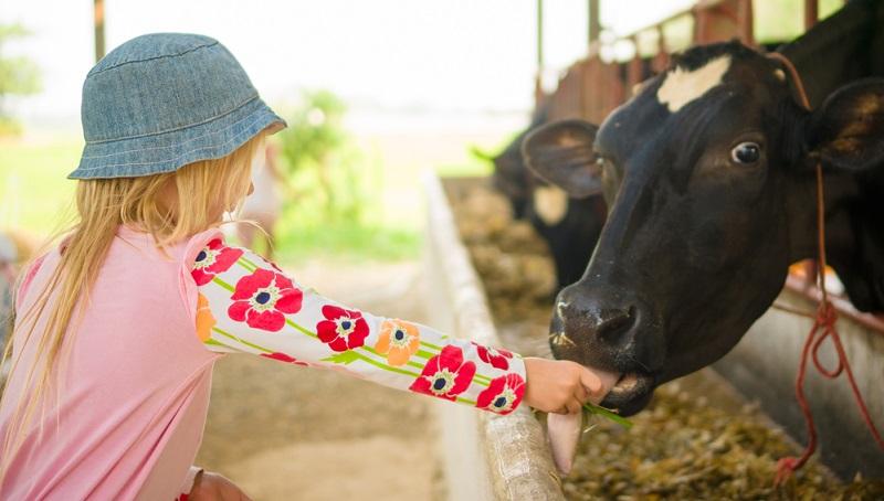 Gerade mit kleinen Kindern ist Urlaub auf dem Bauernhof eine gute Idee.